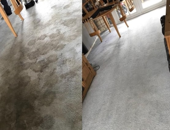 Carpet Cleaning Forest Lake